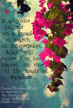 Knowledge. Islam
