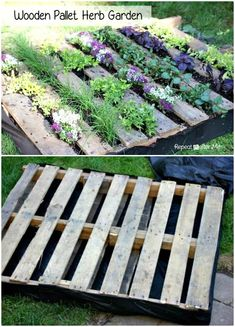 30 DIY Pallet Garden Projects to Update Your Gardens - DIY & Crafts Herb Garden Pallet, Pallets Garden, Diy Garden Projects, Diy Pallet Projects, Vegetable Garden Design, Vegetable Gardening, Plantar, Garden Boxes, Raised Garden Beds