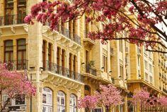 Spring In Beirut