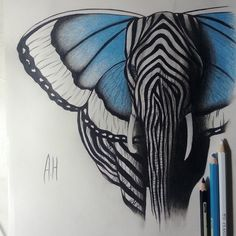 Drawing by @Maureen Mills Mitchell Ali Ashour Hermez Elephant Butterfly Zebra