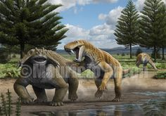 Inostrancevia y Scutosaurus de Mauricio Anton