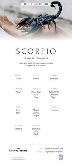 Scorpio Zodiac Sign Correspondences - Scorpio Personality, Scorpio Symbol, Scorpio Mythology and Scorpio Meaning - Scorpio - Tattoo MAG Scorpio Symbol, Scorpio Zodiac Facts, Scorpio Traits, Scorpio Love, Scorpio Woman, Astrology Zodiac, Scorpio Quotes, Scorpio And Cancer, Pisces And Scorpio