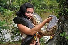 Bildergebnis für a huge anakonda twirling around a hotelier in the Amazon image