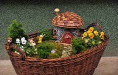 Tündérkert egy régi kosárban - Fairy garden in an old basket