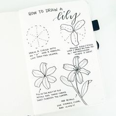 """2,580 Likes, 17 Comments - liz (@bonjournal_) on Instagram: """"Happy Friday!!! How to draw a lily. Hope you enjoy your weekend Please check out @inkbyjeng…"""""""