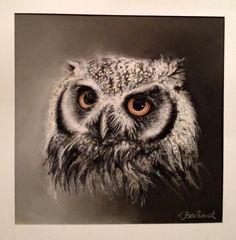 White Faced Scops Owl I, Wildlife Art, Kirstie Fitzpatrick, SAA Professional Members' Galleries