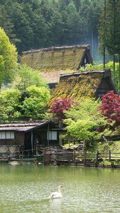 Folklore Village in Takayama - Hida Minzoku Mura, landscape, nature, lake, swan, vernacular architecture