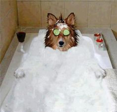 Do you mind not taking my photo while I'm at spa day?