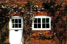Plantas trepadeiras dão um toque especial a essa fachada