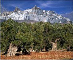 La città bianca di Ostuni (The white city of Ostuni) - Puglia Italy