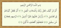 Quran 105 Teks Surat Al Fiil Arab dan Translate Indonesia