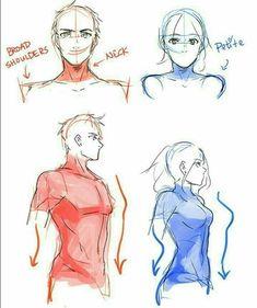 Manga Drawing Tips Body man woman drawing reference torso shirt Body Drawing, Anatomy Drawing, Manga Drawing, Figure Drawing, Woman Drawing, Male Face Drawing, Drawing Poses Male, Drawing Art, How To Draw Anatomy
