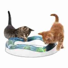 Cats Toys Ideas - The 7 Best Battery-Operated Toys to Keep Your Cat Active - Ideal toys for small cats Diy Cat Toys, Pet Toys, Cool Cats, Cool Cat Trees, Diy Jouet Pour Chat, Gatos Cool, Cat Brain, Peek A Boo, Interactive Cat Toys