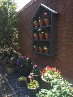 Bookcase, Succulents, Shelves, Garden, Plants, Home Decor, Shelving, Garten, Decoration Home