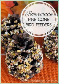 The Friday Find: Creative DIY Bird Feeders - - Pine Cone Crafts for Kids #The #Friday #Find: #Creative #DIY #Bird #Feeders #Pine #Cone #Crafts #for #Kids Easy Fall Crafts, Easy Arts And Crafts, Fall Crafts For Kids, Diy For Kids, Toddler Crafts, Fall Diy, Pine Cone Crafts, Bird Crafts, Nature Crafts