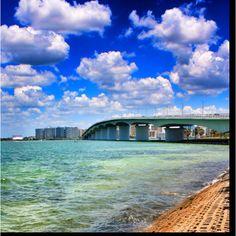 Dealchicken Tampa - Sarasota