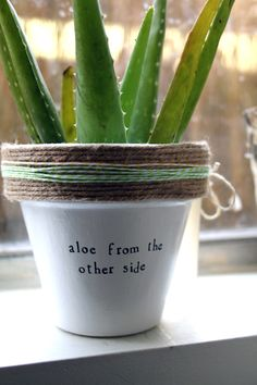 Plant puns 'n' planters by PlantPuns on Etsy Potted Plants, Garden Plants, Indoor Plants, Potted Garden, Indoor Garden, Outdoor Gardens, Creation Deco, My Secret Garden, Dream Garden
