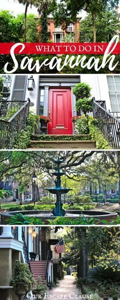 Check out the best things to do in Savannah, whether you're visiting for a day, a weekend, or more! Savannah is one of our favorite US cities for a reason--the history, architecture, squares, impeccable food, beautiful parks, and gorgeous surrounding area all contribute to making Savannah an incredibly unique city and an amazing travel destination. #georgia #southern #travelour