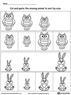 Animal Sorting by Size: Owl and Rabbit: Help your child practice sorting and comparing sizes by placing the pictures in order by size in this animal sorting printable worksheet. In this activity, your child will cut and place the correct size animal in the blank spot.