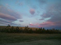 Moon setting Columbus mt. This morning...7:48