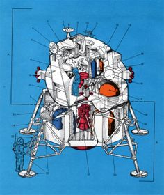 The definitive Saturn V cutaway you always wanted on your wall Apollo Space Program, Nasa Space Program, Mars Project, Ancient Astronomy, Physics Concepts, Apollo Missions, Space Race, Space Architecture, Aircraft Design