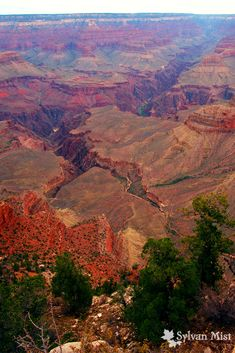 The Grand Canyon, National Park, Arizona, South Rim, Mather Point, Natural Wonders of the World, Desert Landscape, Landscape photography, AZ, Kaibab, Colorado River, Largest Gorge in the World, First place to stop, Amazing Views, Vista