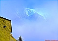 A glimpse of Mount Juneau emerges from mist in this beautiful photo by Tom Pauser Photography!