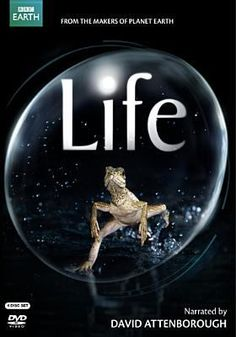 Cover image for Life (Television program)