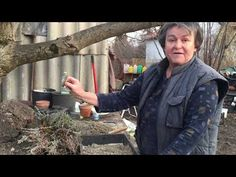 Levendula tavaszi metszése és szaporítása - YouTube Medicinal Plants, The Great Outdoors, Home And Garden, Youtube, Gardening, Lawn And Garden, Healing Herbs, Outdoor Life, Off Grid