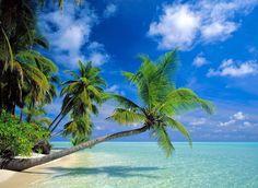 Кипр, Мальдивы и Египет – рай, созданный для двоих - ПоЗиТиФфЧиК - сайт позитивного настроения!