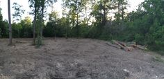 Partially cleared lot.  5/16/14