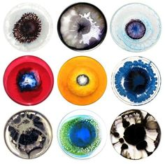 This charming man infects your life like a flesh eating bacteria and untreatable virus bringing hopelessness and despair Petri Dishes by Klari Reis Bio Arte, London Art Fair, Bulle D Air, Petri Dish, Galaxy Painting, Science Art, Art Plastique, Abstract Watercolor, Creative Inspiration