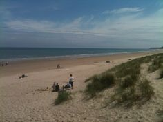 See 28 photos and 2 tips from 174 visitors to Curracloe Beach. Amazing Places, Four Square, Beaches, The Good Place, Ireland, Water, Travel, Outdoor, Gripe Water