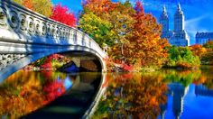 Image result for november autumn pictures