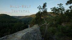 """Wunderwerk Wald - Der neueste NP Thayatal Trailer ist da! Er nimmt Euch ein Stück weit mit in die """"Wald-Welt"""" im Thayatal. Lasst Euch verzaubern :) Mountains, Nature, Plants, Travel, National Forest, Woodland Forest, Pictures, Naturaleza, Viajes"""