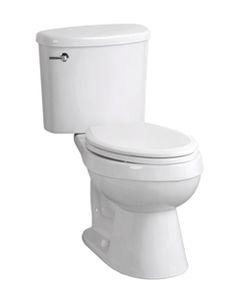 Icera- Riose Professional 2-piece toilet