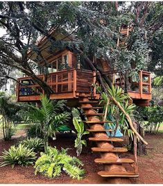 Baumhaus Planning is Made Easier Through a Collection of Great Tree House Books - Life ideas Your Ma Beautiful Tree Houses, Cool Tree Houses, Backyard Treehouse, Treehouse Ideas, Treehouse Living, Future House, My House, Tree House Plans, Tree House Designs