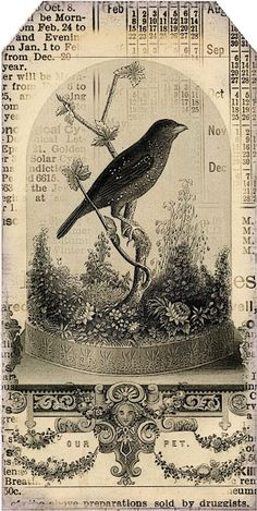Antique Bird and Cloche image - good for altered art  **********************************************    Lilac & Lavender