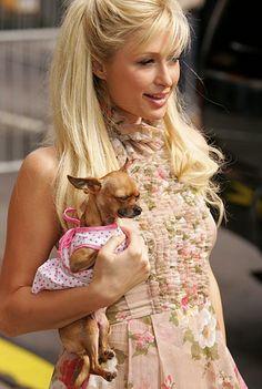 29578baae15f Paris Hilton