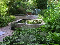 back yard - small water garden (fountain, feature)