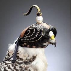 Diamond Falcon Hood