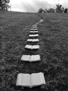 * The Path to Knowledge *could be replicated with laminated photocopies of book covers.