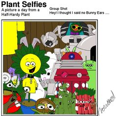 Plant looks happy today Plant Cartoon, Hardy Plants, Happy Today, Bunny, Pictures, Fictional Characters, Photos, Cute Bunny, Rabbit