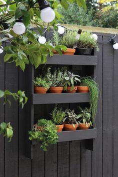 Modern garden makeover DIY: Vertical herb garden for balcony and small gardens. Vertical Herb Gardens, Small Courtyard Gardens, Vertical Garden Diy, Small Gardens, Modern Gardens, Wall Herb Gardens, Diy Pallet Vertical Planter, Vertical Planting, Patio Gardens