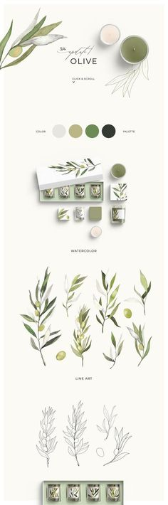 I'm so glad to introduce you a new multi-functional product TRENDY GREENERY:. I'm so glad to introduce you a new multi-functional product TRENDY GREENERY: watercolor & line art This is a col