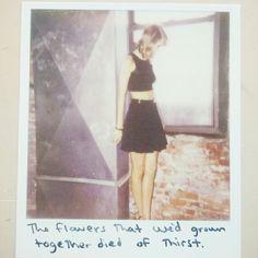 Taylor Swift | pinterest & insta ↠ @missmegs0802