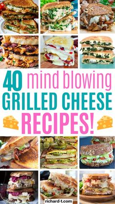 These 40 grilled cheese recipes are really mind blowing! I'm so glad I found these amazing grille cheese recipes! There are so many variations! Sandwiches For Lunch, Wrap Sandwiches, Grilled Cheese Recipes Easy, Sandwich Recipes, Grilled Cheese Sloppy Joe, Lunch Menu, Cooking Recipes, Grill Recipes, Yummy Food