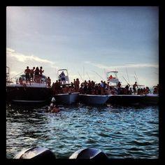 Columbus day regatta miami 2012