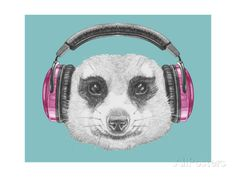 Portrait of Mongoose with Headphones. Hand Drawn Illustration. Art by victoria_novak at AllPosters.com