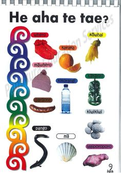 Classroom Resources, Teacher Resources, Maori Words, School Organisation, Unusual Words, Picture Boards, Becoming A Teacher, Bethlehem, Activity Ideas